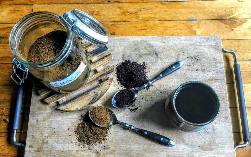 5 nutritionele eigenschappen van paddenstoelen