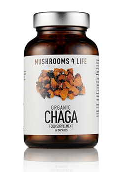 Chaga paddenstoelsupplement