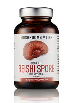 Reishi Spore