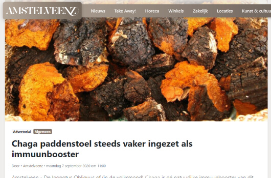 Amsteelveenz over de Chaga paddenstoel